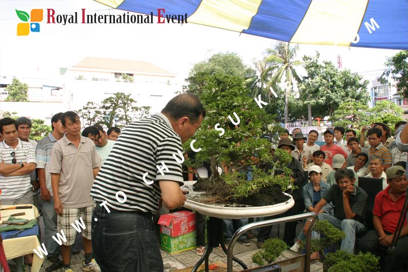 Tổ chức sự kiện triển lãm cây cảnh nghệ thuật và bonsai Việt Nam và Quốc tế