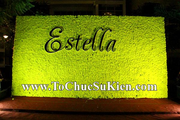 Cung cấp thiết bị tổ chức sự kiện Đêm tiệc Estella - Q.2 - Tp.HCM - 05