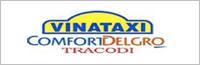 Tổ chức sự kiện Đêm hội trung thu - Công ty Cổ phần VINATAXI